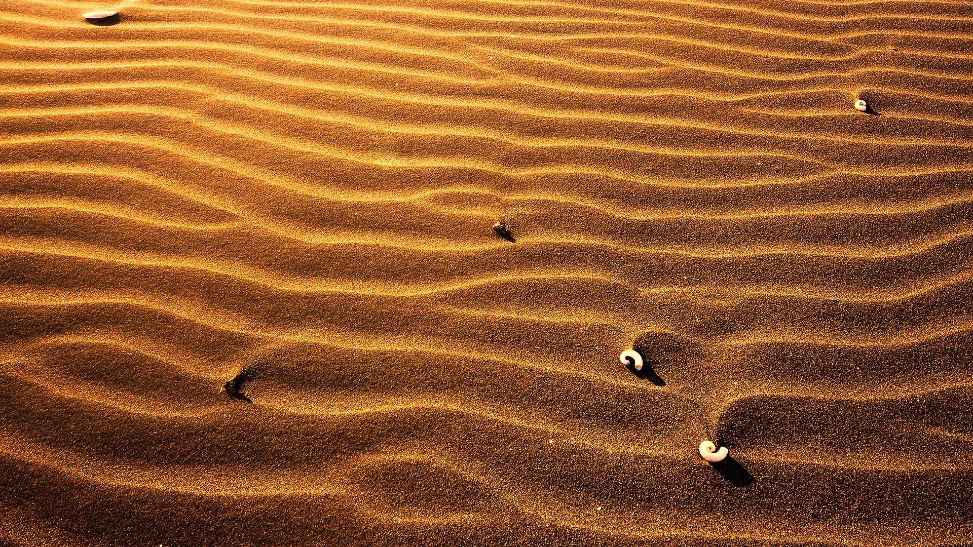 sandball-background