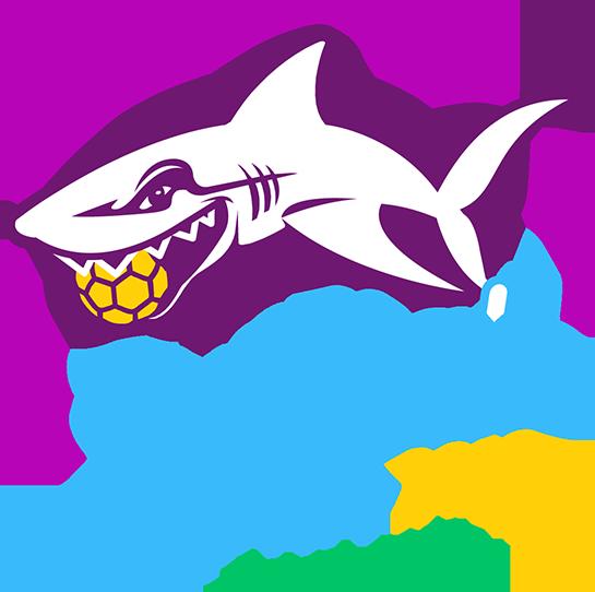 ★ SANDBALL TOUR 2019 : TORCY ★